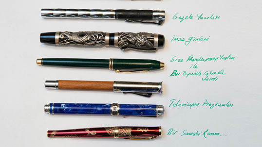 A selection from Mario Levi's pen collection